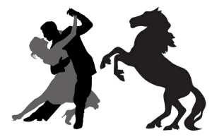 horse_and_salsa