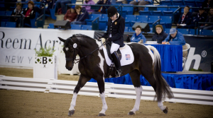 Picture from www.equestrian-magazine.com