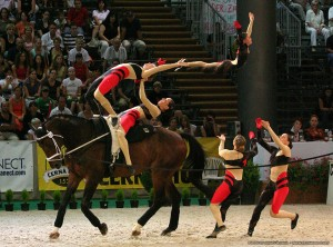 Picture from http://purehorsesense.blogspot.co.uk. Credits to Ghazy Bajak