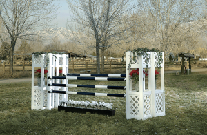 Picture from http://horsejumps.net