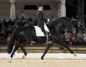 Picture from www.trakehnercontact.nl