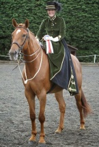 Picture from http://springwillowequestrian.blogspot.co.uk