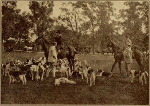 """Image from the book """"The Hunting Field with Horse and Hound in America, the British Isles and France"""", written by Frank S. Peer (1910). Retrieved from www.flickr.com"""